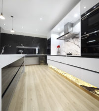 Modern Kitchen Design and Renovation
