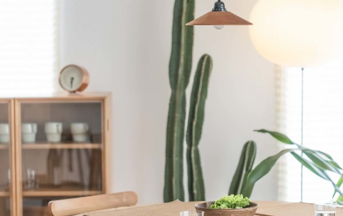 Contemporary Daylight Dining Room